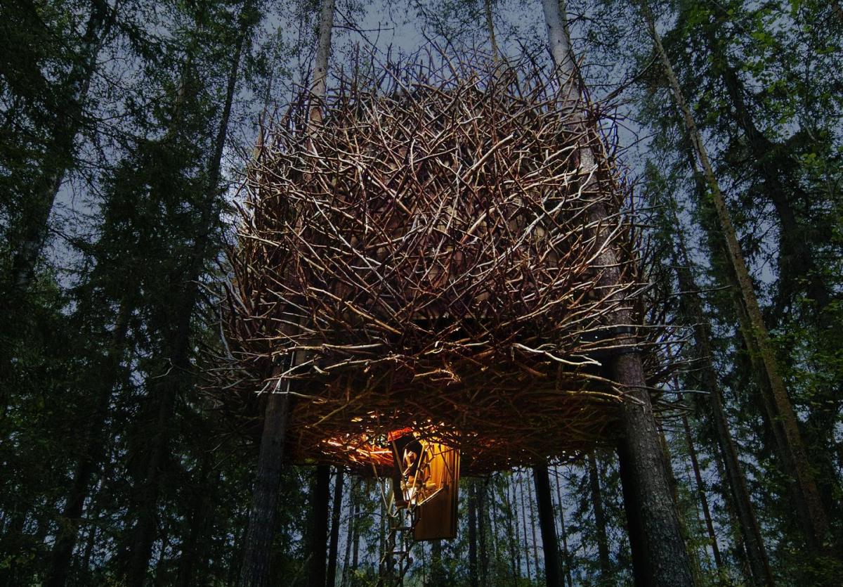 treehotel-the-birds-nest 鳥の巣のようなツリーホテル