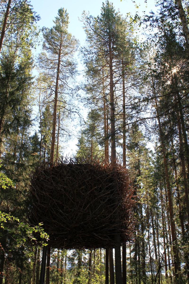 treehotel-the-birds-nest 鳥の巣のようなツリーホテル4
