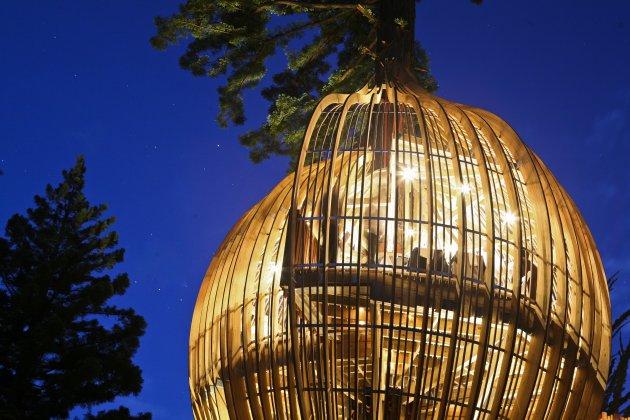 イエロー・ツリーハウス・レストラン(Yellow Treehouse Restaurant)15