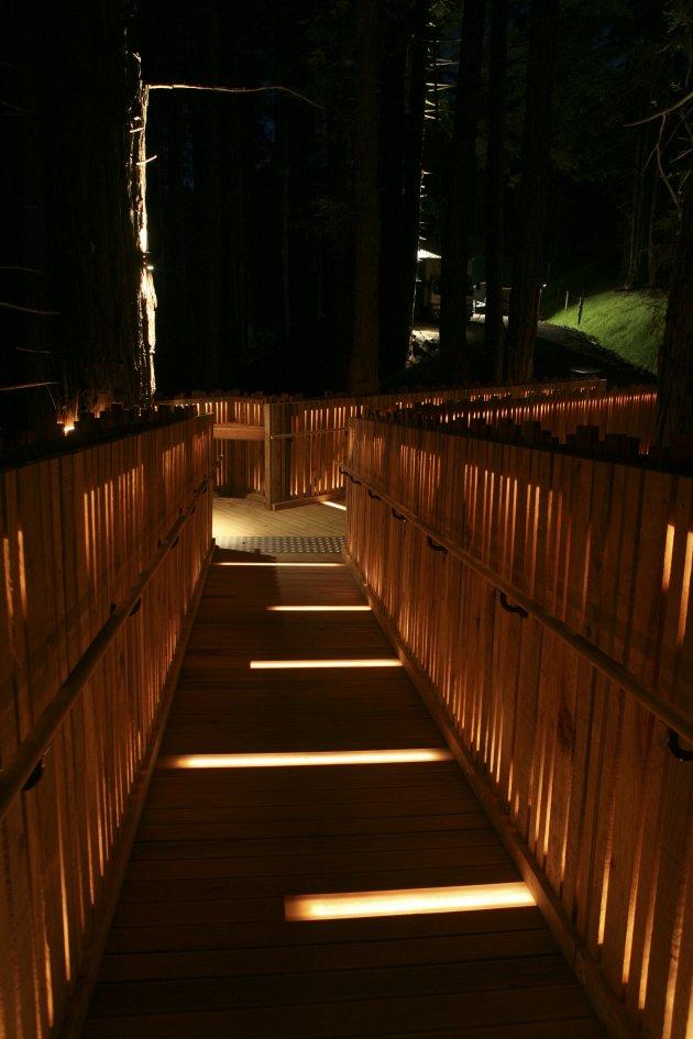 イエロー・ツリーハウス・レストラン(Yellow Treehouse Restaurant)13