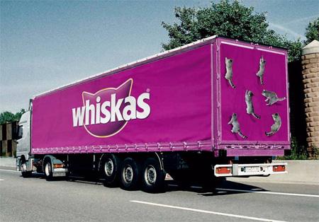 トラック広告18
