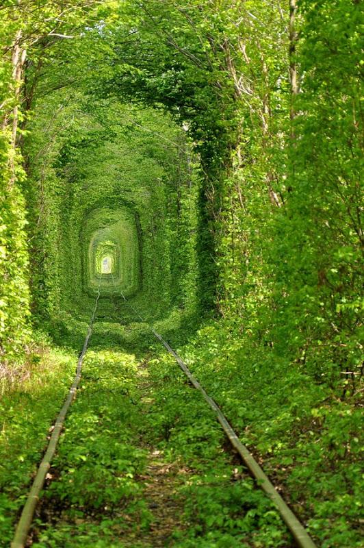 Tunnel of Love in Kleven, Ukraine4
