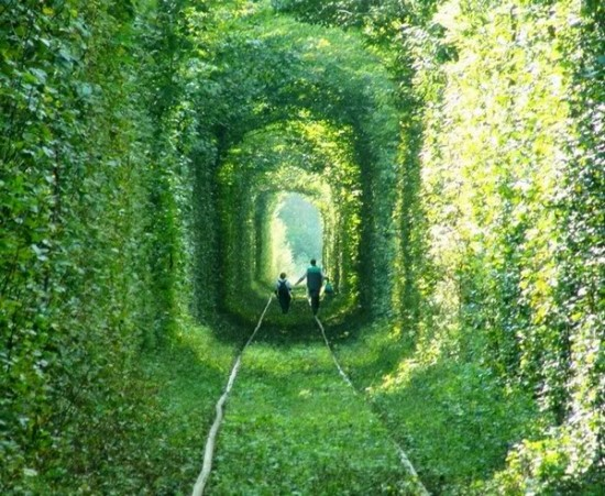 Tunnel of Love in Kleven, Ukraine11