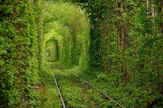 Tunnel of Love in Kleven, Ukraine3