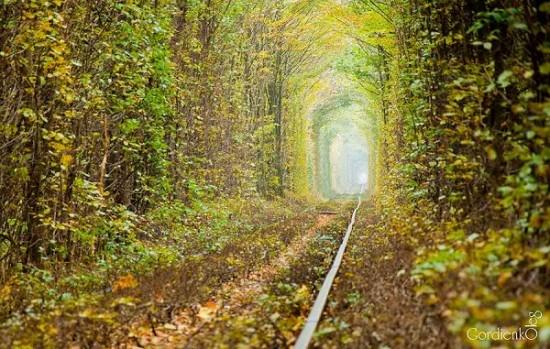 Tunnel of Love in Kleven, Ukraine23