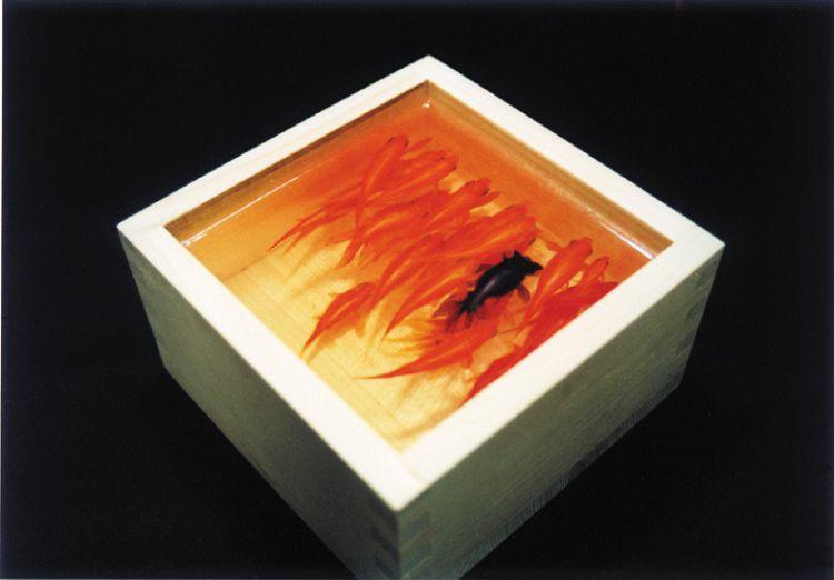 金魚酒「和金」Kingyosake WAKIN : 2003 五合枡、透明樹脂137×137×75mm