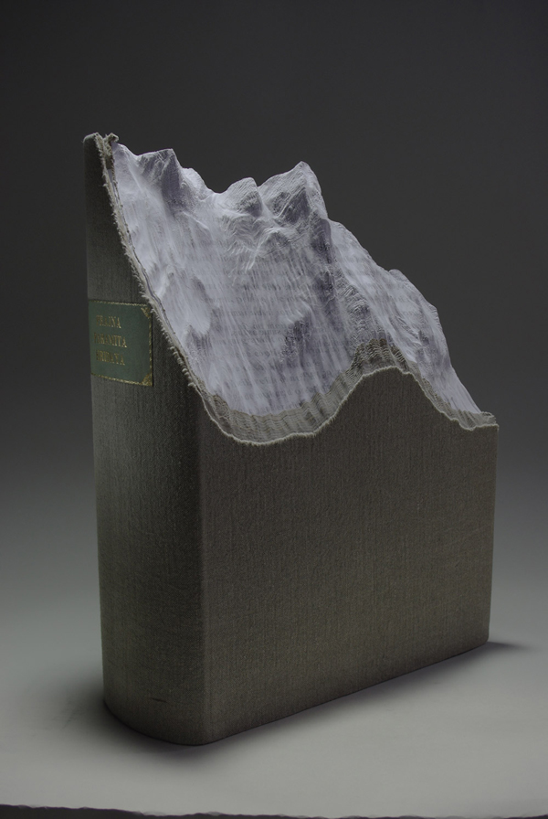 Carved Book Landscapes by Guy Laramee6