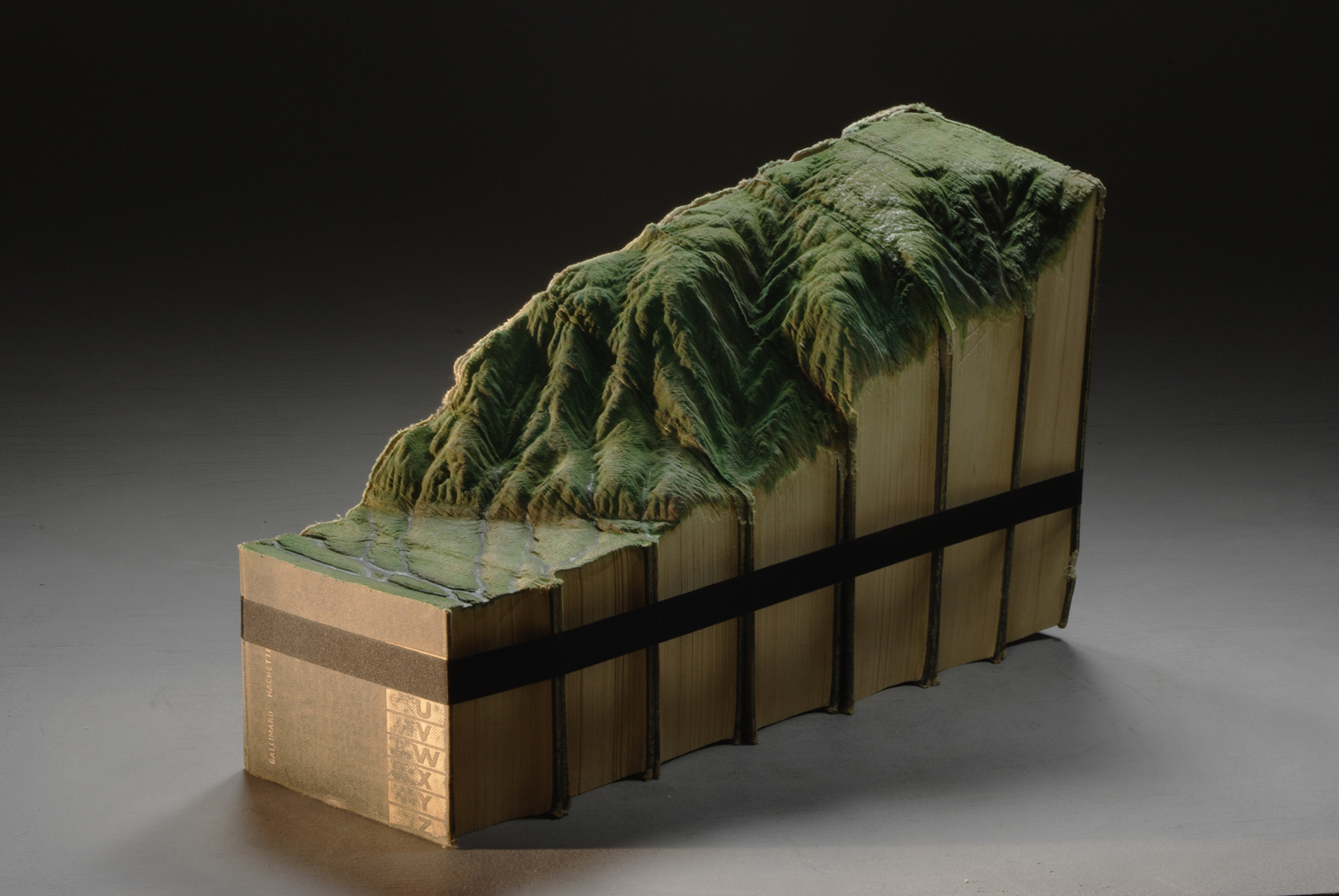 Carved Book Landscapes by Guy Laramee12