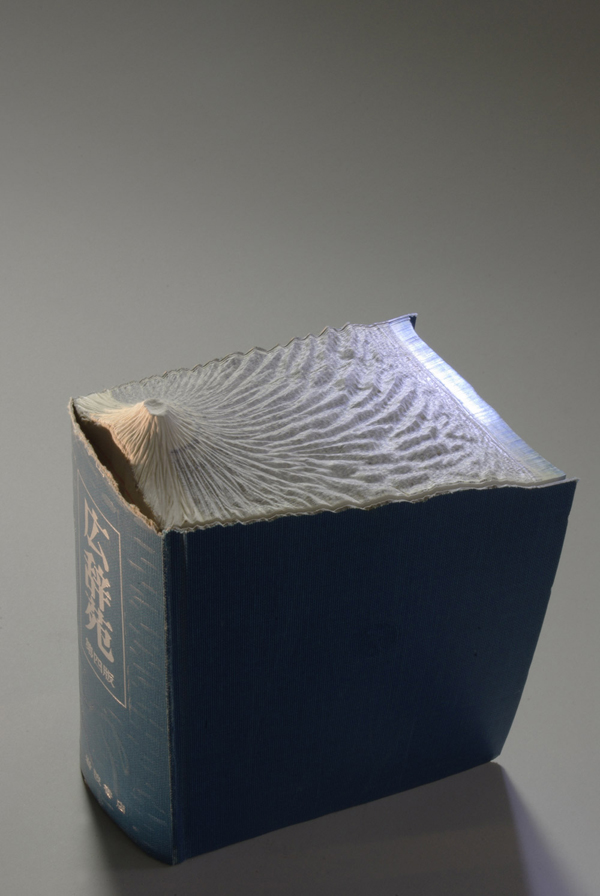 Carved Book Landscapes by Guy Laramee4