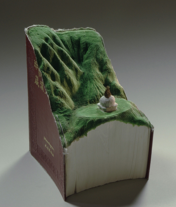 Carved Book Landscapes by Guy Laramee7