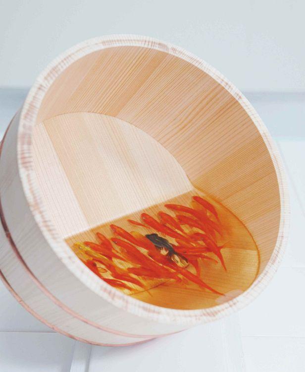 百済 Qudara : 2007 木桶、透明樹脂○220×H110mm