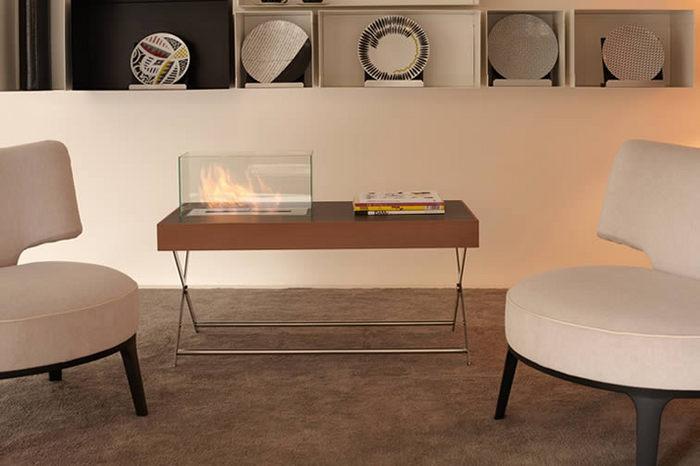 bio fireplace21