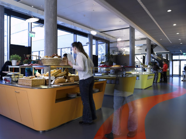 Google Zurich Office8