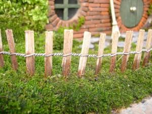 ロードオブザリングの盆栽13