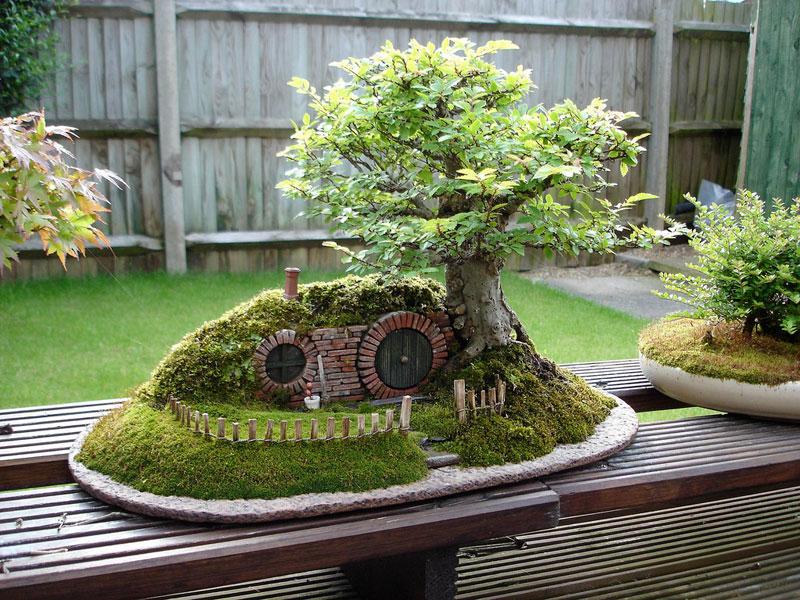 ロードオブザリングの盆栽