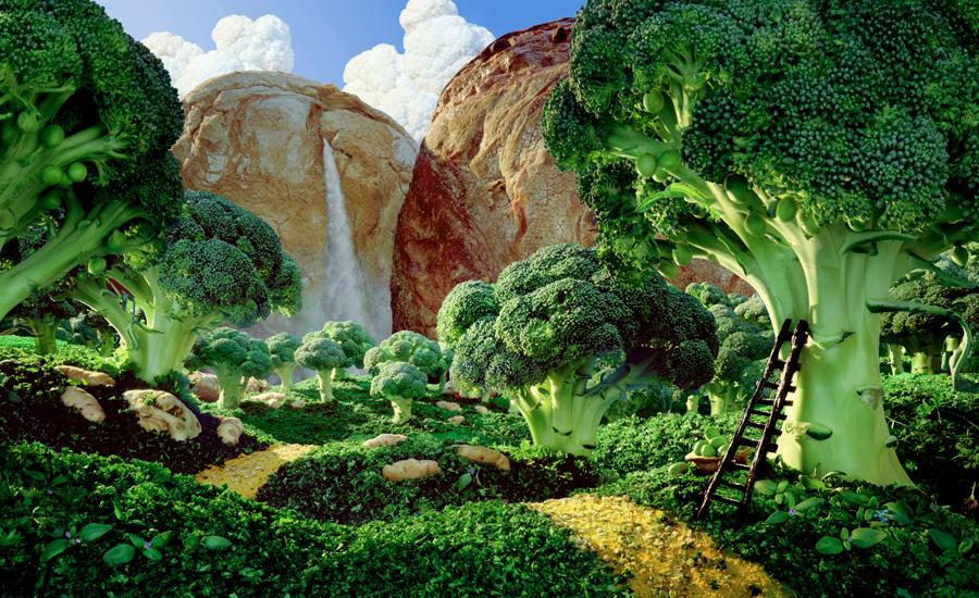 Brocolli-Forest すべて食べ物でつくった風景写真18