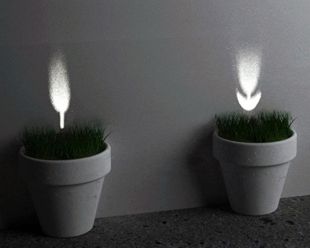 光によって花を咲かせる植木鉢