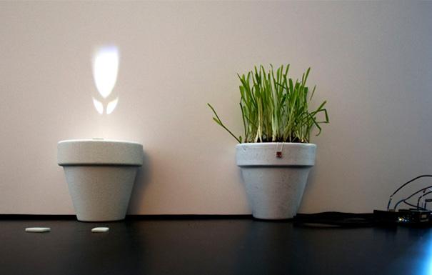 光によって花を咲かせる植木鉢4