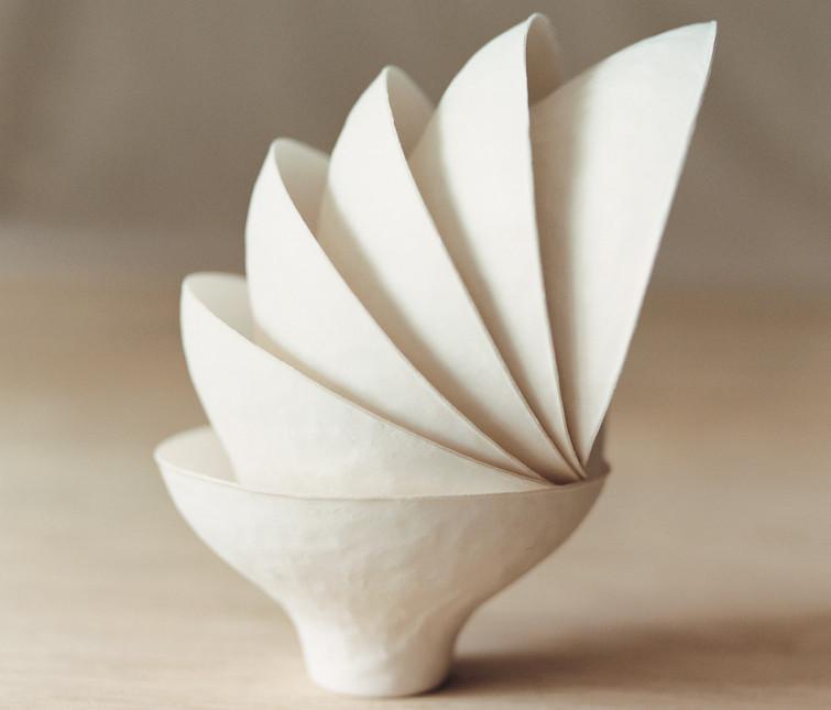 環境に優しく美しい紙の器 WASARA10