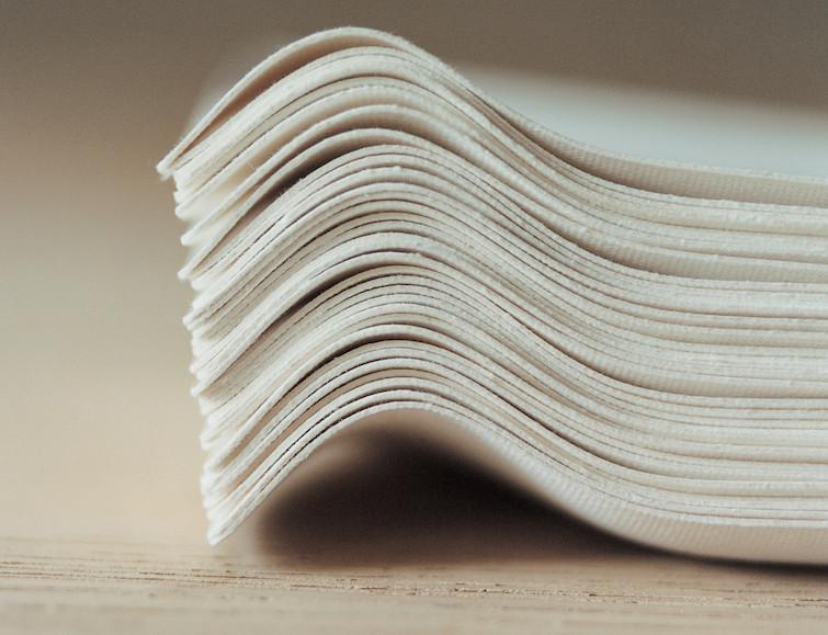 環境に優しく美しい紙の器 WASARA3
