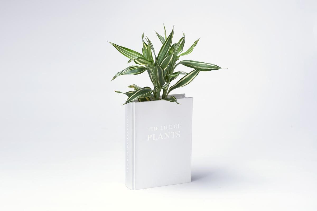 """本の形をした植木鉢""""THE LIFE OF PLANTS""""4"""
