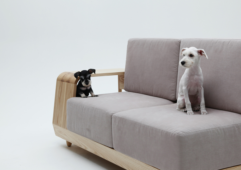 the dog house sofa5