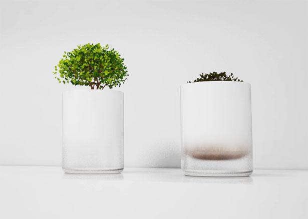 水やりをするタイミングが目でわかる鉢「Floating Pot」2