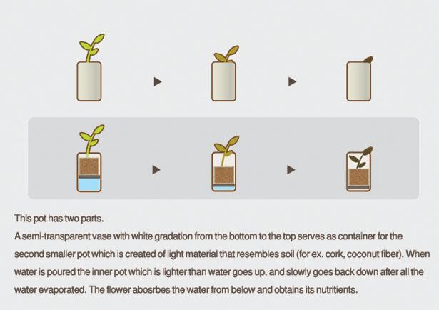水やりをするタイミングが目でわかる鉢「Floating Pot」3