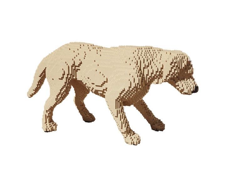 レゴがある風景。写真の中に隠れているレゴブロックで出来たナニか。9