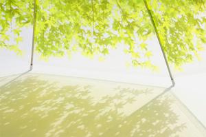 いつでも木漏れ日の中にいることが出来る傘「木漏れ日傘」2