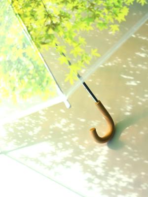 いつでも木漏れ日の中にいることが出来る傘「木漏れ日傘」6