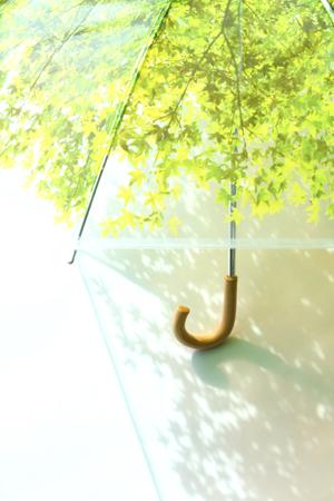 いつでも木漏れ日の中にいることが出来る傘「木漏れ日傘」7