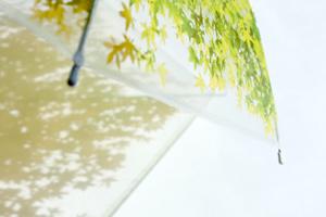 いつでも木漏れ日の中にいることが出来る傘「木漏れ日傘」8