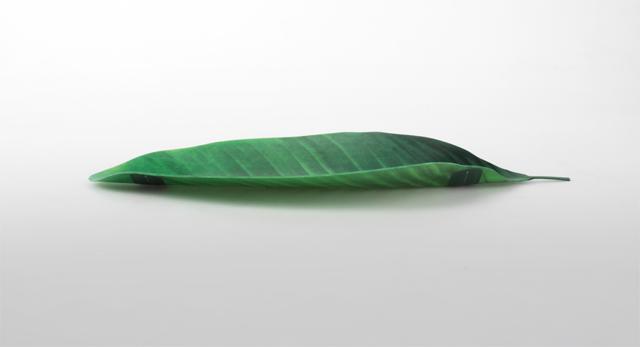 葉っぱのえんぴつおき「Leaf Tray」