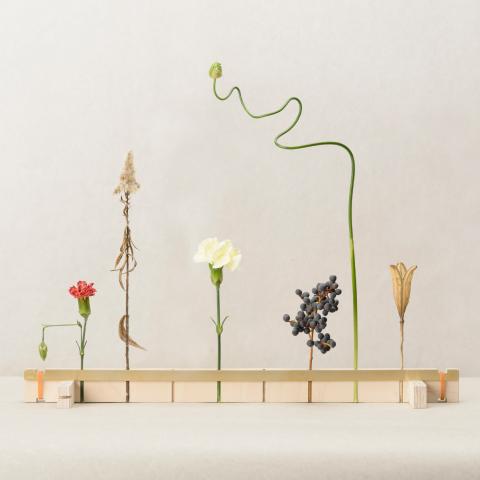 花を逆さまに吊るしゆっくりと乾燥させることでドライフラワーにすることができる花器「fadeless」4
