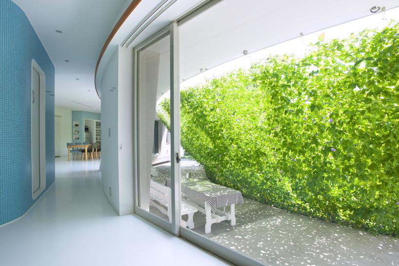 熊木英雄建築事務所の「緑のカーテンの家」3