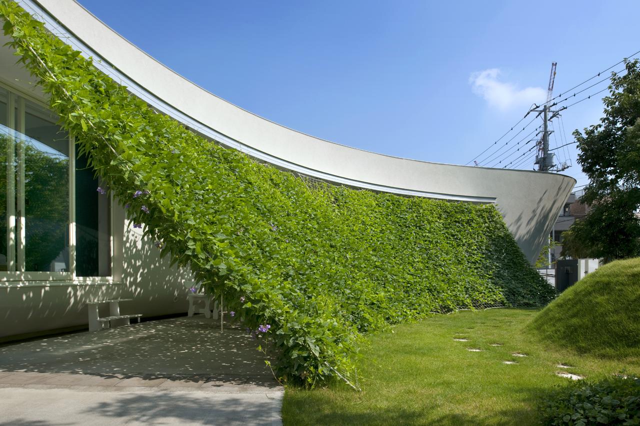 熊木英雄建築事務所の「緑のカーテンの家」11