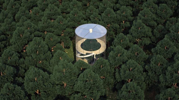 見た目にも美しい、ガラス張りのツリーハウス「Tree in the house」1