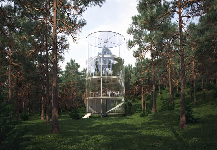 見た目にも美しい、ガラス張りのツリーハウス「Tree in the house」2