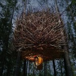 treehotel-birds-nest-exterior3-via-smallhousebliss-150x150