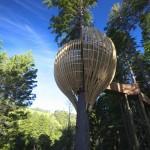 treehouse_221208_04-150x150