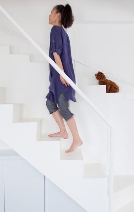 犬のための階段