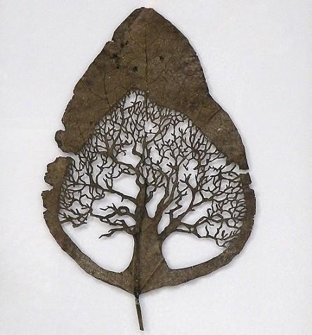 葉っぱで出来たアート作品、リーフアート