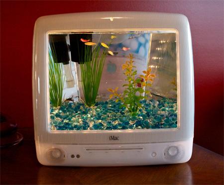 iMacで出来たアクアリウム