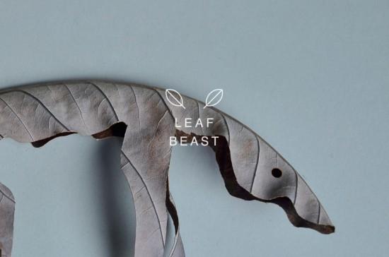 日本人アーティスト前田麦(まえだばく)氏のホオノキの葉をつかった作品「LEAF BEAST ( 葉獣 )」