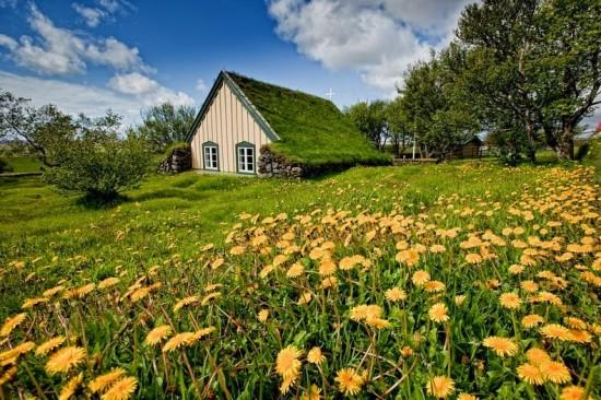 芝生に埋もれた教会