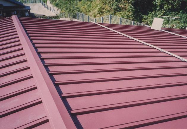 一般的なトタン屋根
